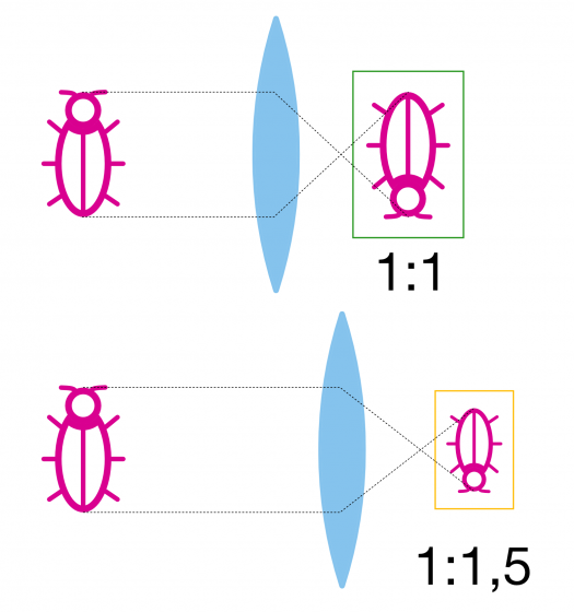 Srovnání měřítka zvětšení pro dosažení stejného úhlu záběru – pokud budeme s menším snímačem (dole) fotit z o kousek větší vzdálenosti a tedy při měřítku odpovídajícímu crop faktoru, dosáhneme přibližně stejného úhlu záběru jako na větším snímači a současně o něco větší hloubky ostrosti.