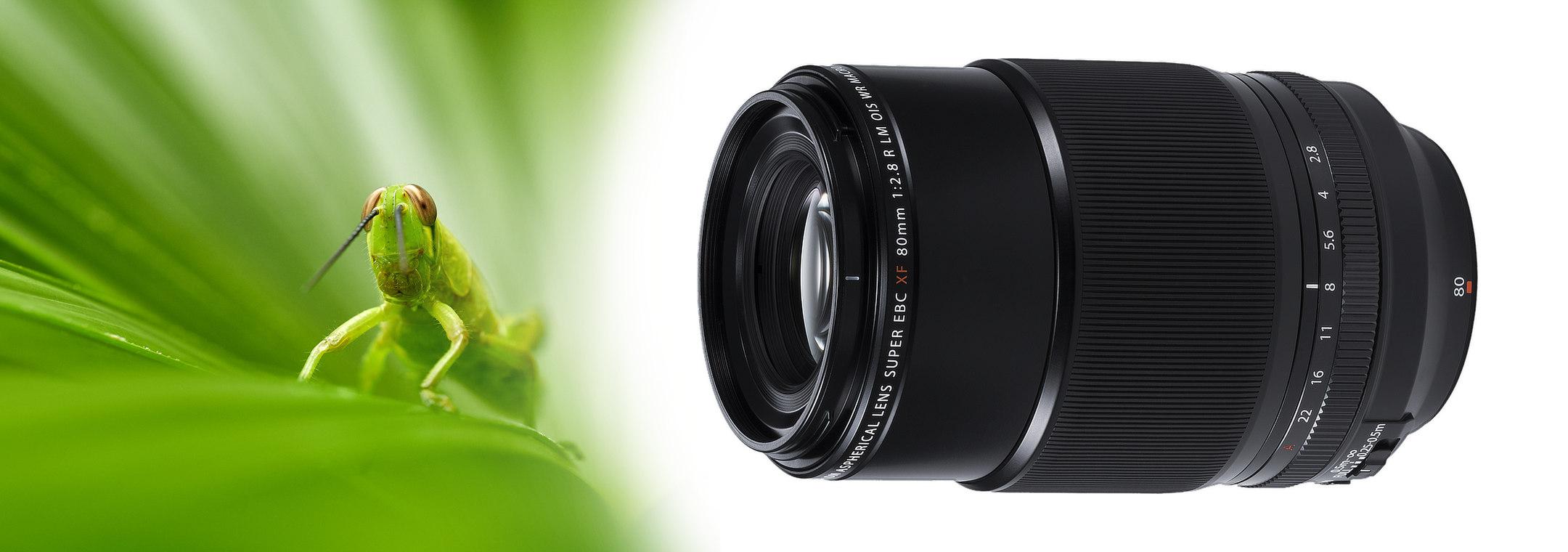 My experience with Fujifilm XF80mmF2 8 Macro lens – Michal