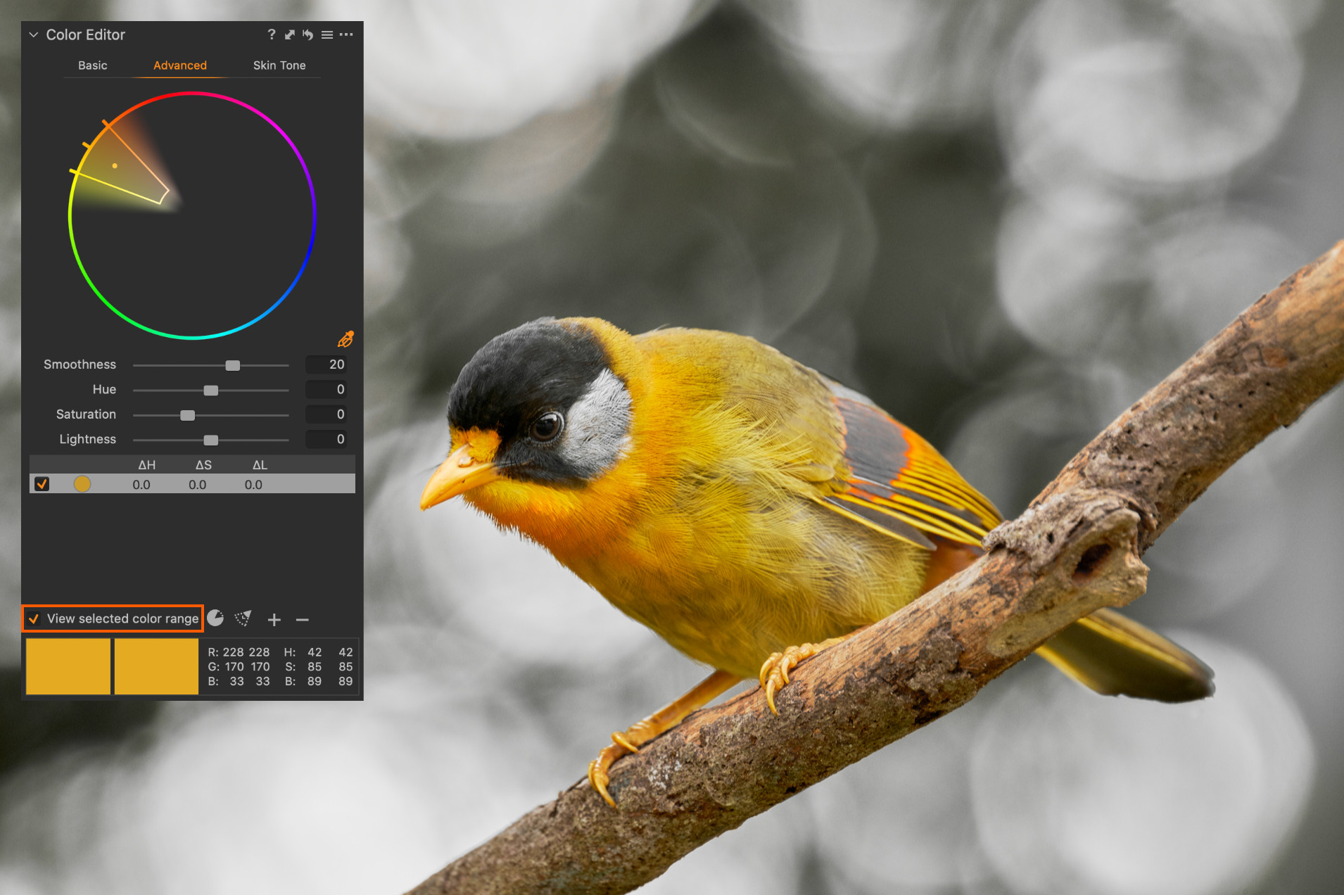 Funkce View Selected Color Range zobrazuje odstíny mimo výběr černobíle – pozadí má normálně zelený odstín, ale do výběru nespadá.