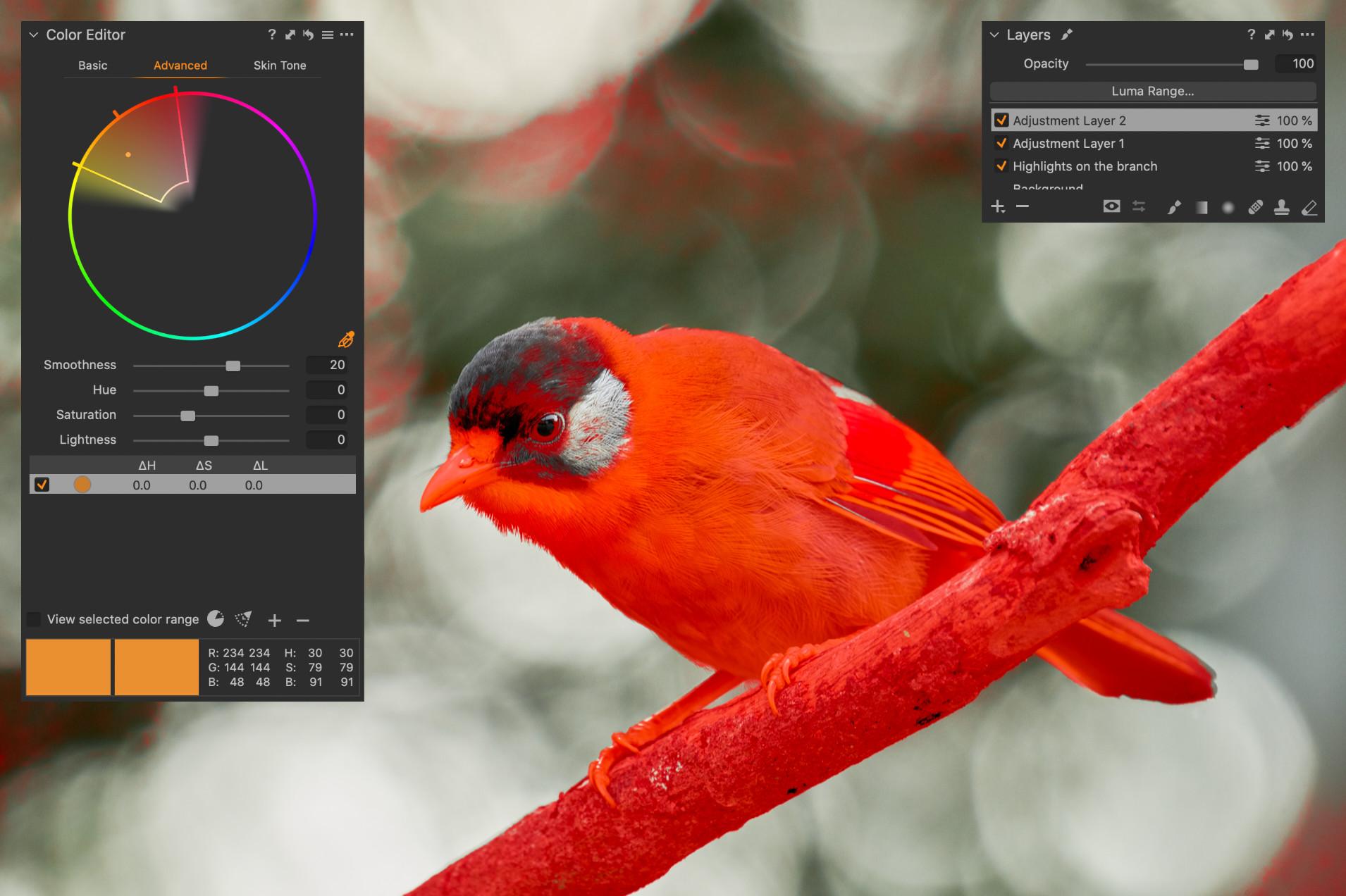 Upravený výběr – mírně posunutý výřez barevného kruhu zmenšil vliv v pozadí a zahrnuje nově také červené peří na křídle timálie